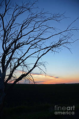 Photograph - Minnesota Sunset 21 by Cassie Marie Photography
