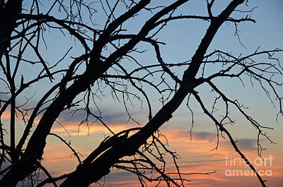 Photograph - Minnesota Sunset 22 by Cassie Marie Photography