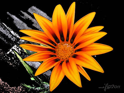 Miracle Of A Flower Art Print by Maciek Froncisz