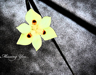 Keep In Touch Photograph - Missing You by Gunz The Great
