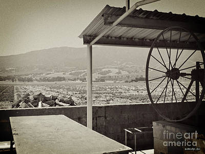 Photograph - Mission Barbacoa by Methune Hively