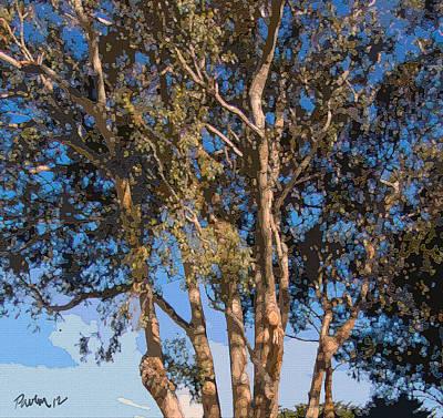 Digital Art - Mission Ranch Eucalyptus - Carmel Ca by Jim Pavelle