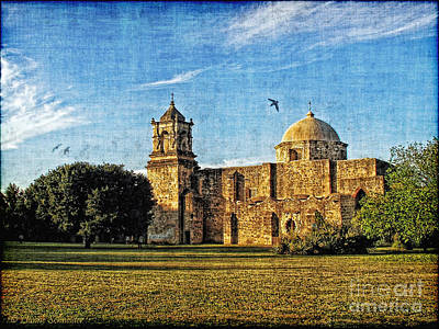 Mission San Jose Art Print by Lianne Schneider