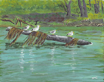 Painting - Mississippi River Gulls by Nicole Grattan