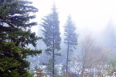 Mist Along The Highland Scenic Highway Art Print by Thomas R Fletcher