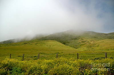 Photograph - Mist Of The Hills by Johanne Peale