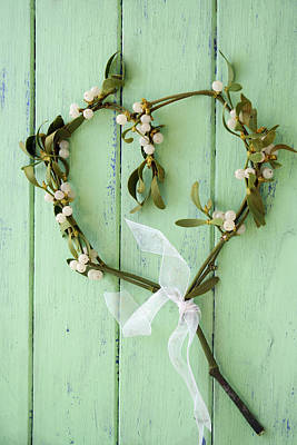 Common Item Photograph - Mistletoe Decoration by Erika Craddock