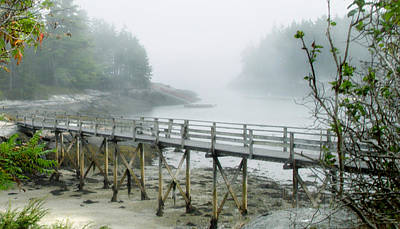 Photograph - Misty Bridge by Marilyn Marchant