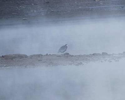 Misty Morning At Norris Lake Art Print