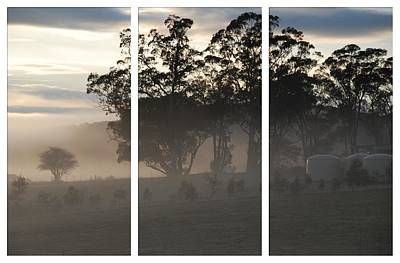 Photograph - Misty Morning Triptych by Fran Woods