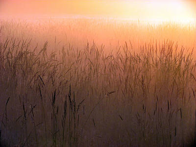 Photograph - Misty Sunrise by I'ina Van Lawick