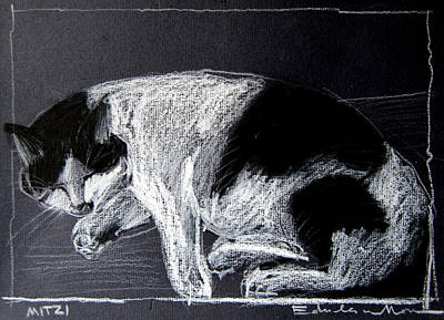 Resting Drawing - Mitzy by Mona Edulesco
