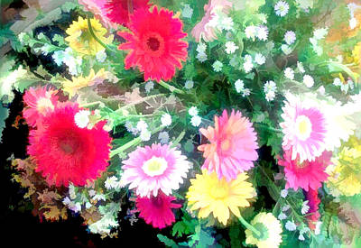 Mixed Asters Art Print by Elaine Plesser