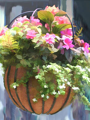 Begonia Garden Painting - Mixed Begonias In Wire Hanging Basket by Elaine Plesser