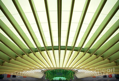 Abstract Photograph - Modern Architecture by Carlos Caetano