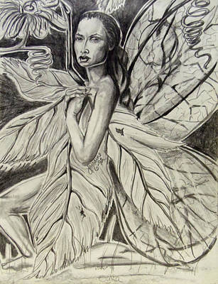 Passion Vine Drawing - Modest by Lorraine Davis Martin
