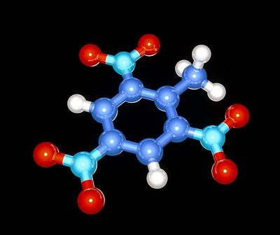 Tnt Photograph - Molecular Model Of The Explosive Tnt by Laguna Design