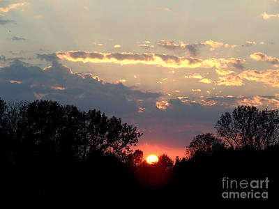 Photograph - Moment In Shine by Scott B Bennett