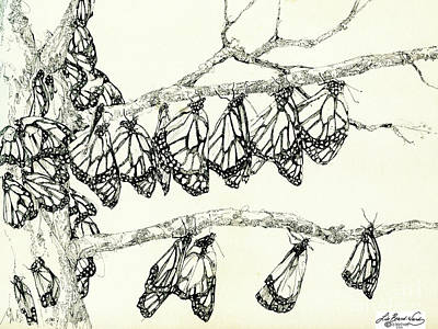 Balck Art Drawing - Monarch Tree by Lizi Beard-Ward