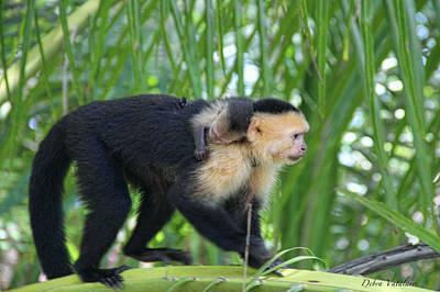 Monkey On My Back Art Print by Debra     Vatalaro