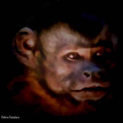 Monkey See Art Print by Debra     Vatalaro