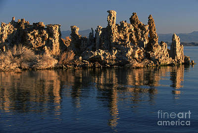 Photograph - Mono Lake Tufa by Sandra Bronstein