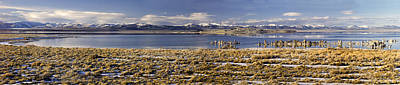 Photograph - Mono Lake Winter by Joe  Palermo