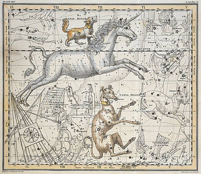 From A Celestial Atlas Painting - Monoceros by A Jamieson
