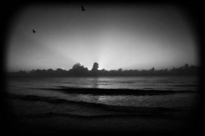 Photograph - Monochrome Miami by Mandy Shupp