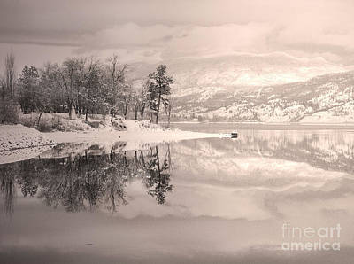 Photograph - Monotone Winter by Tara Turner