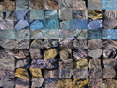 Photograph - Montage Blue Beach Fossil Specimens by William OBrien