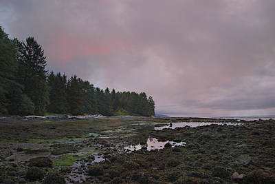 Photograph - Moody Skies - Botanical Beach by Marilyn Wilson