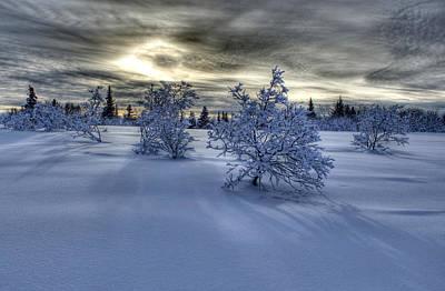 Art Print featuring the photograph Moody Snow Scene by Michele Cornelius