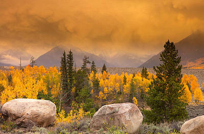 Fall Scenes Photograph - Moody by Tim Reaves