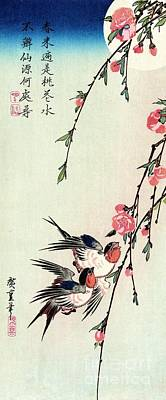 Edo Period Painting - Moon - Swallows - Peach Blossoms by Pg Reproductions