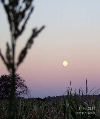 Art Print featuring the photograph Moon by Andrea Anderegg