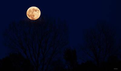 Photograph - Moon Arisen by Edward Peterson