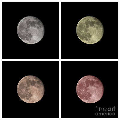 Moon Art Print by Blink Images