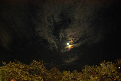 Photograph - Moon Dance by Terry Wallace