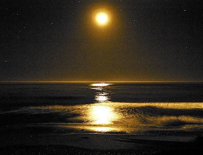 Photograph - Moon Dust by Parrish Todd