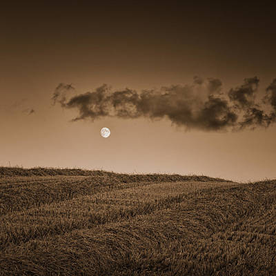 Y120817 Photograph - Moon On Wolds by Tony McLean
