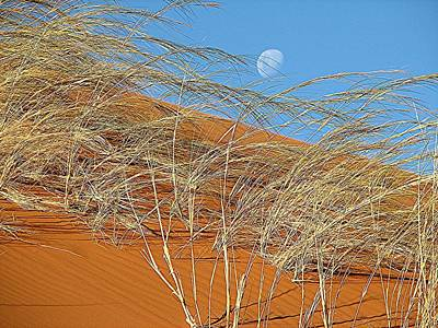 Moon Over Dune Art Print