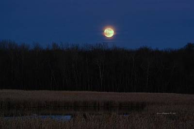 Art Print featuring the photograph Moon Rise 2 by Steven Clipperton