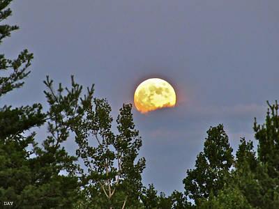 A Summer Evening Photograph - Moon Romance  by Debra     Vatalaro