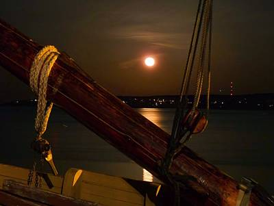 Photograph - Moon Shot by Janice Drew