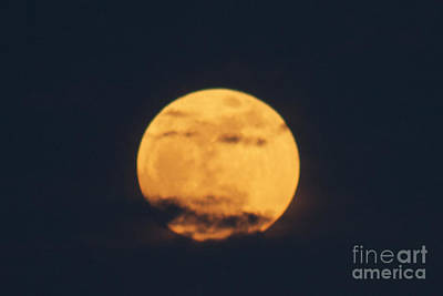 Photograph - Moon by William Norton