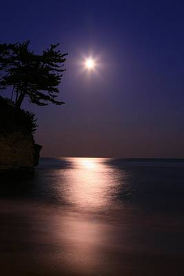 Moonlight (cormorant Point) Art Print by Copyright Crezalyn Nerona Uratsuji