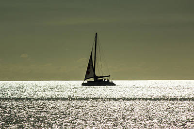 Moonlight Sail Art Print by Rene Triay Photography