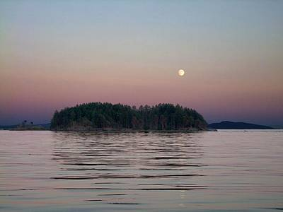 Photograph - Moonlit Evening by George Cousins