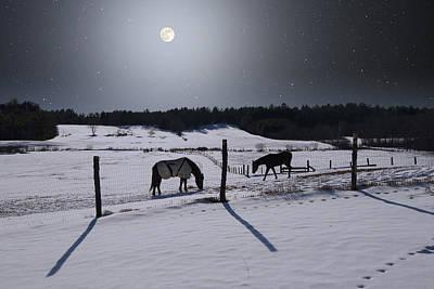 Moonlit Horses Art Print